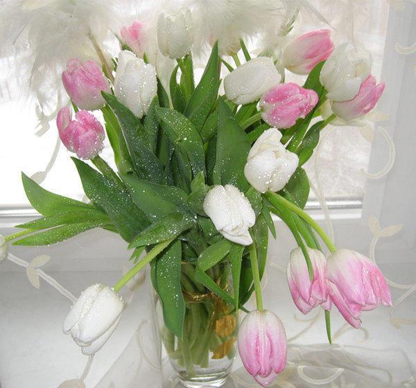 http://xrest.ru/schemes/00/0c/53/81/Тюльпаны-1.jpg