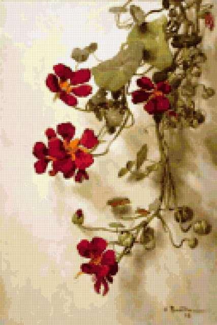 Летние цветы, предпросмотр