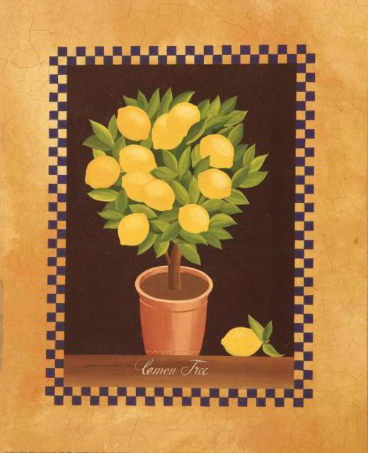 Лимонное дерево, натюрморт