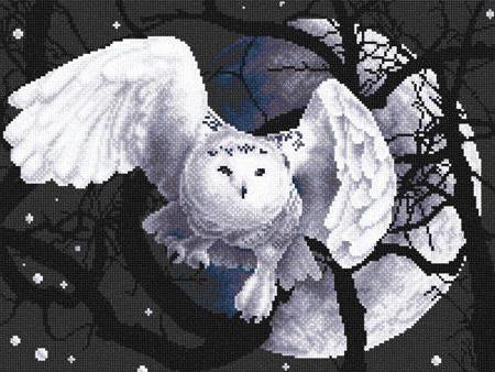 Полярная сова, ночь, птица,