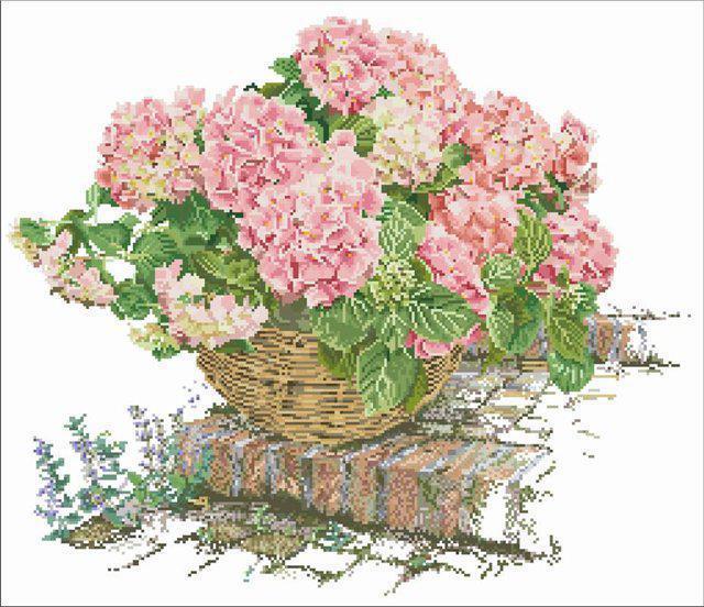 Розовая гортензия, оригинал