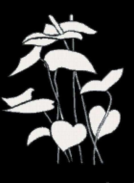 Триптих 2 черно-белые цветы,