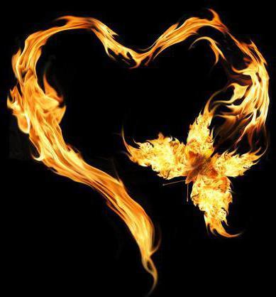 Бабочка. Сердце. Огонь