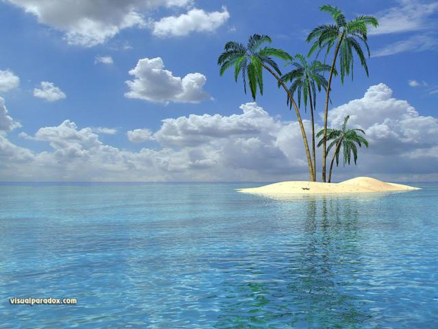 Пальма, пальмы