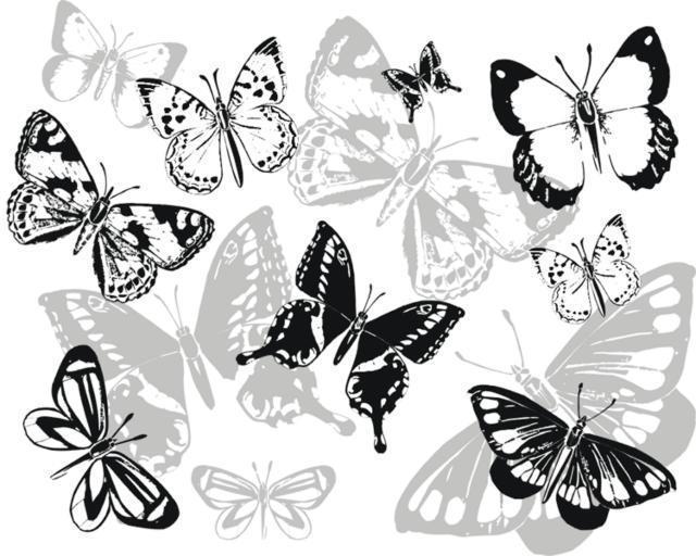 Бабочки монохром, оригинал