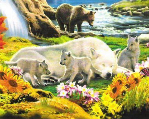 Семейство волков, животные