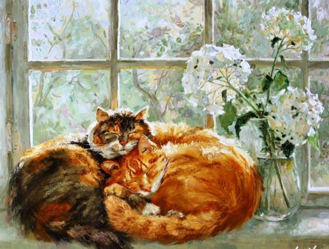 Кошки на окошке, животные,