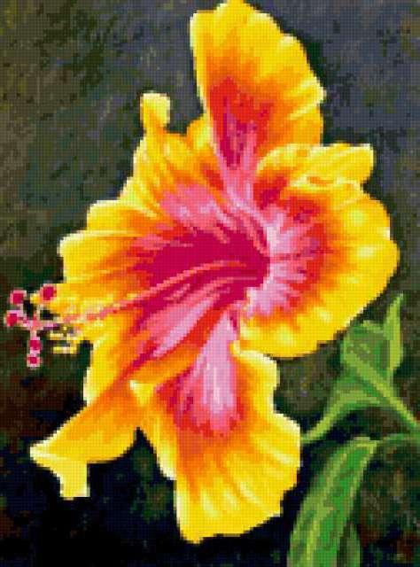 К схеме вышивки «Цветок