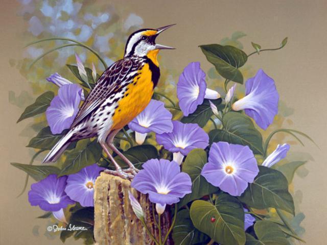 Цветы, птицы, цветы, птицы