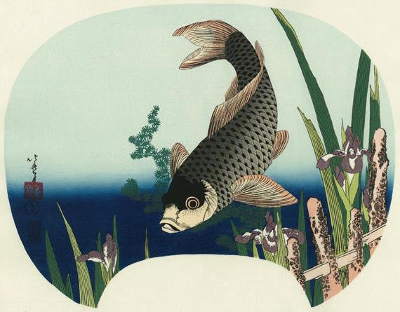 Карп, япония, гравюра, картина