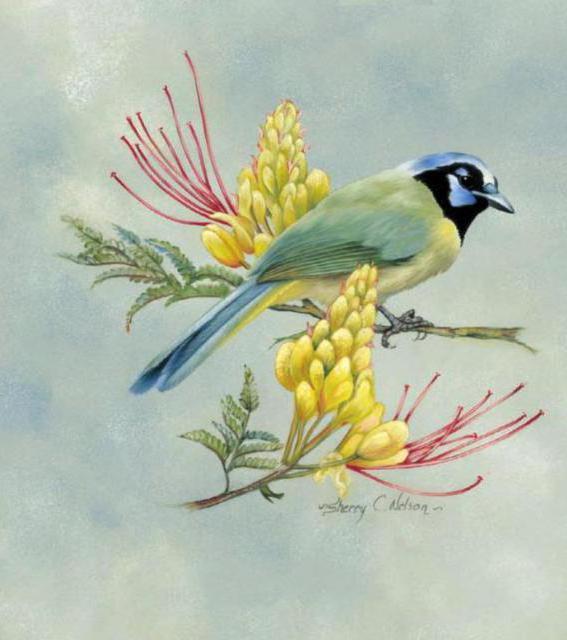 Цветы и птицы, живопись, цветы