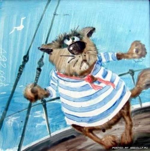 Кот моряк,