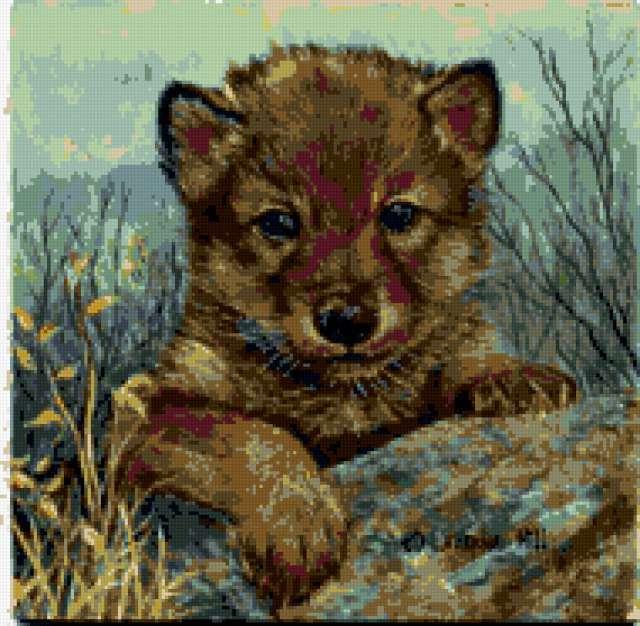 Схема вышивки волчонок