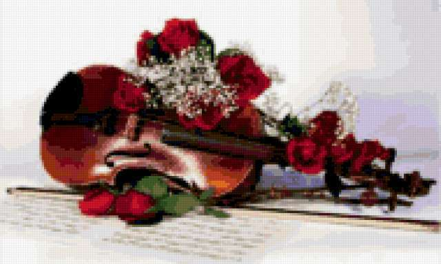Скрипка, виолончель, розы
