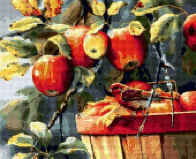Птичка и яблоки, яблоки,
