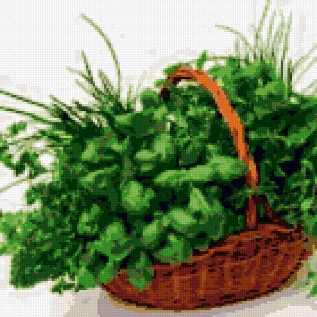 Травы, травы, пряные травы,
