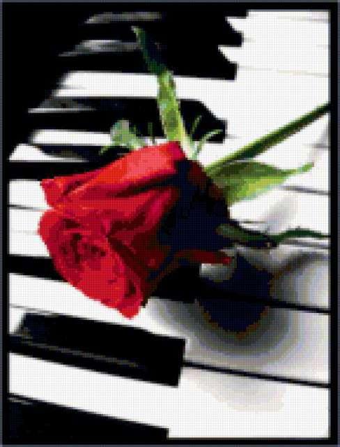 Фортепиано и роза