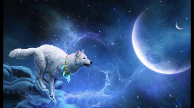 Белый волк, волк