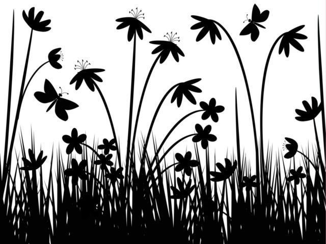 Черно-белые цветы, оригинал