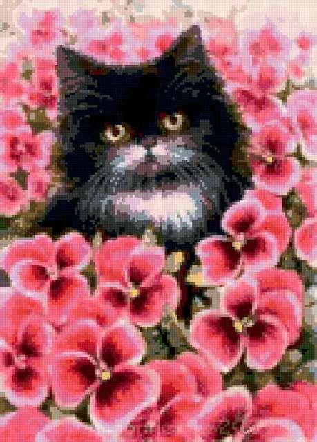 Кот и анютины глазки, котик,