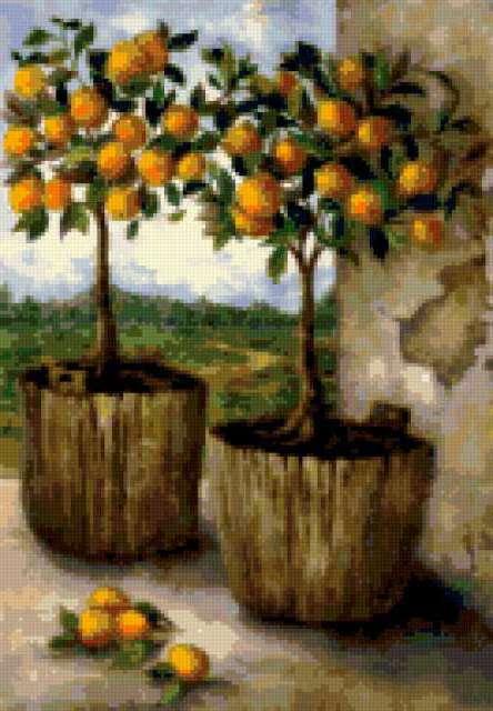 Лимонные деревья, предпросмотр