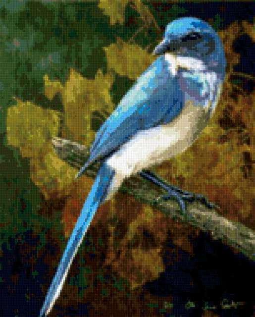 Синяя птица, предпросмотр