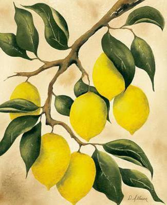 Лимонное дерево,