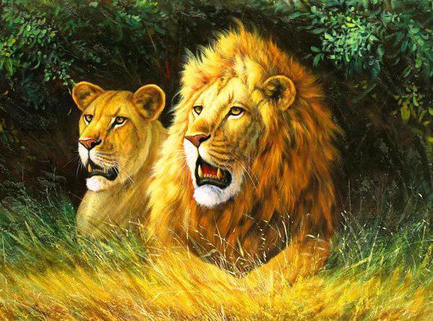 Львы, оригинал