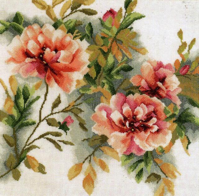 Розы, розы, роза, розочки,