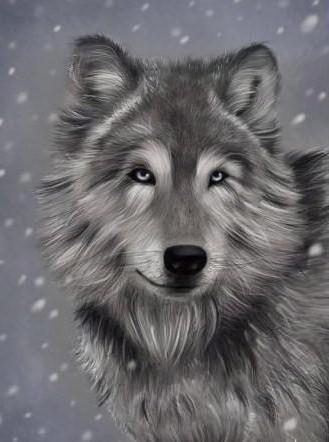К схеме вышивки «Волчица» нет