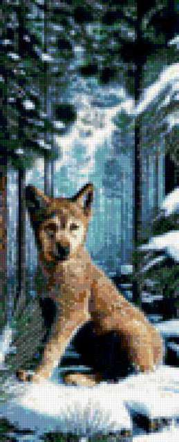 Волчонок, предпросмотр