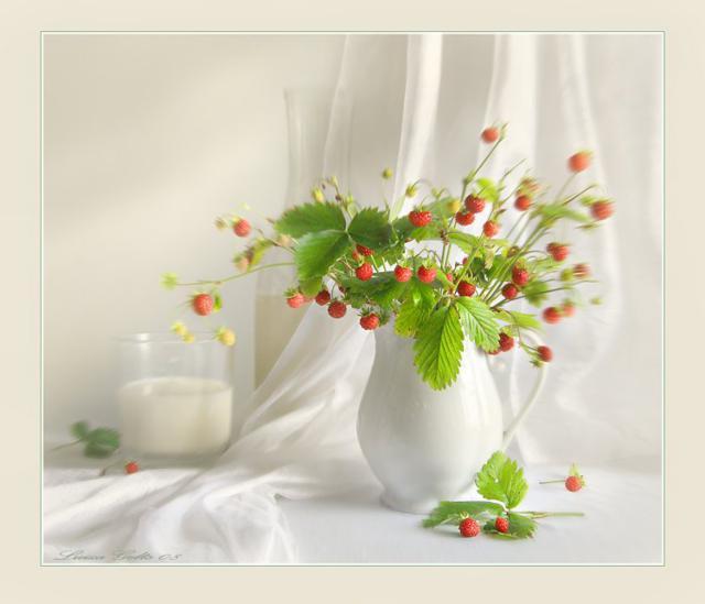 Шедевры от Luiza Gelts, цветы