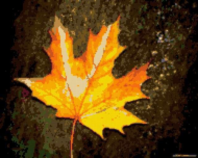 Кленовый лист, предпросмотр