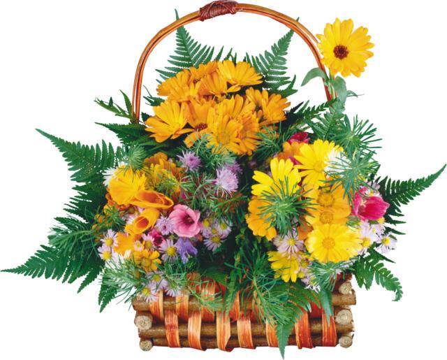 Цветы в корзине, цветы