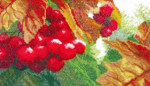 Калина, калина, ягоды, осень