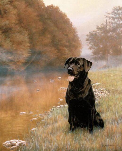 Черный лабрадор, живопись