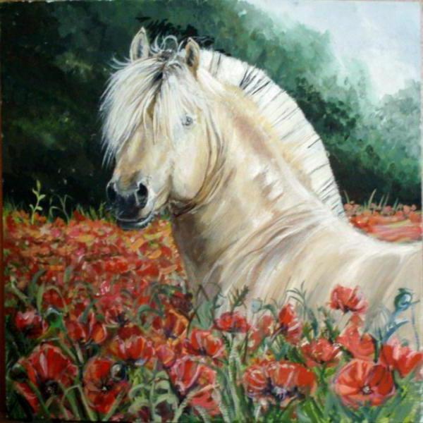 Конь в маках, конь, кони,