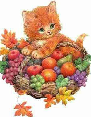Котенок в корзинке, осень,