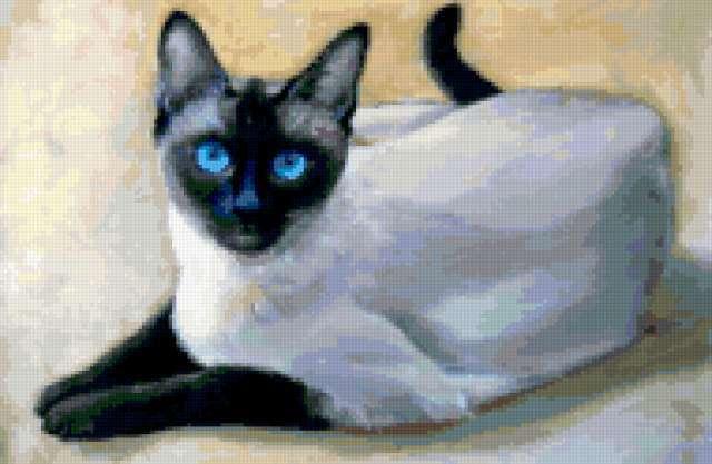 Сиамский кот, предпросмотр