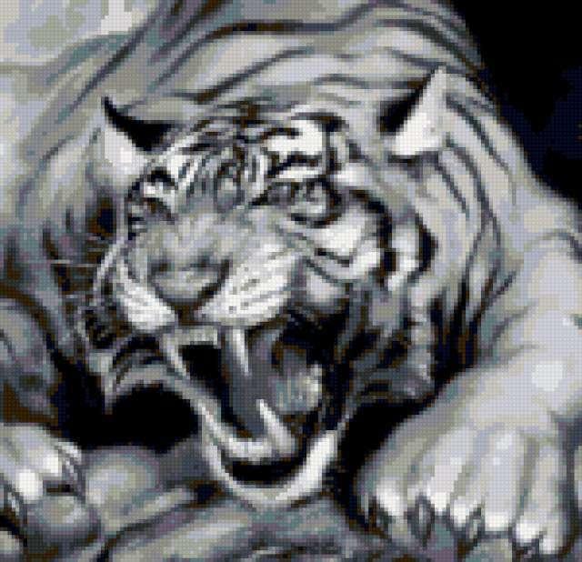 Тигр, черно-белые