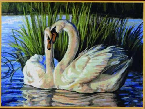 Лебеди, любовь