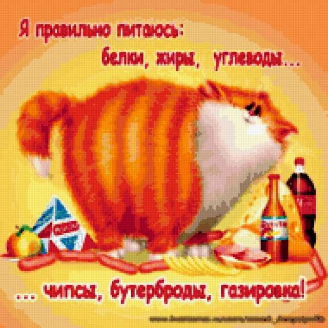 Котейка и еда,
