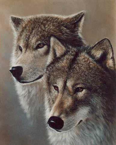 Волк и волчица 3, оригинал