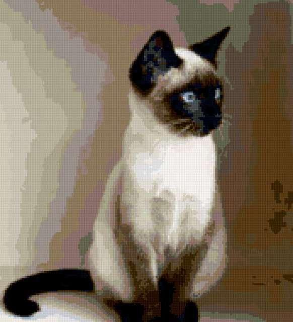 Схема вышивки «Сиамский кот»