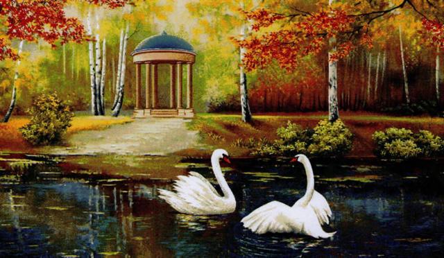 Пара лебедей, лебеди, птицы,