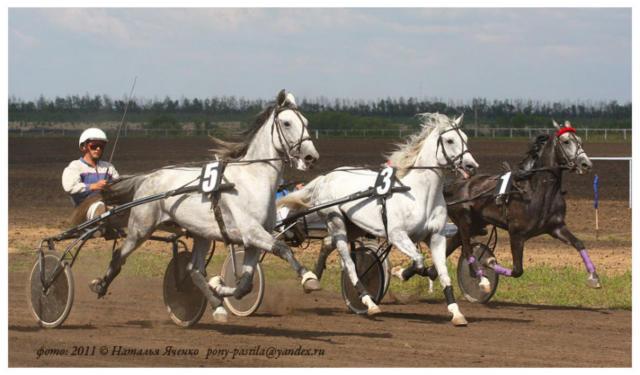 Тройка лошадей, оригинал