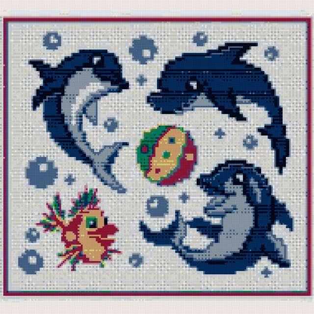 Забавный дельфин, предпросмотр
