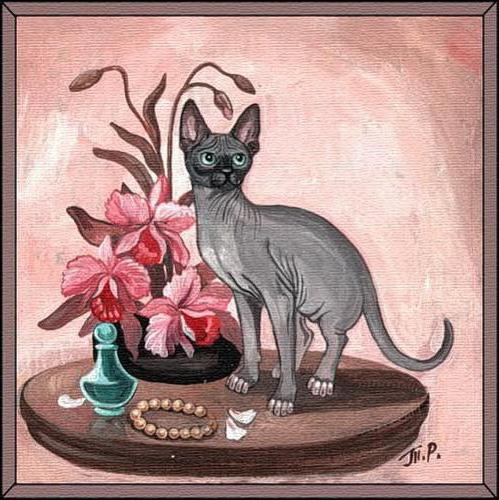 Схема вышивки кошки сфинкса