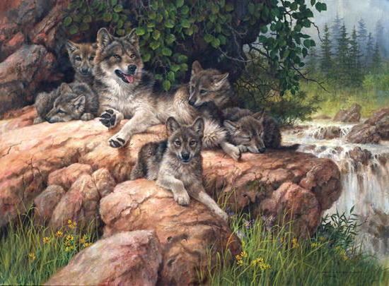 Волчица с волчатами, оригинал
