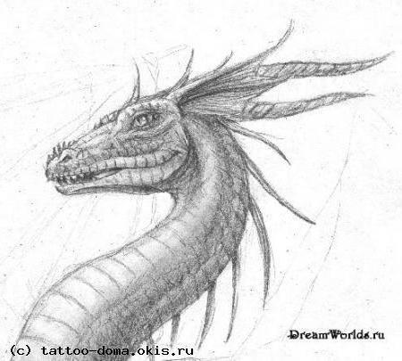 дракон, черно-белое, монохром,